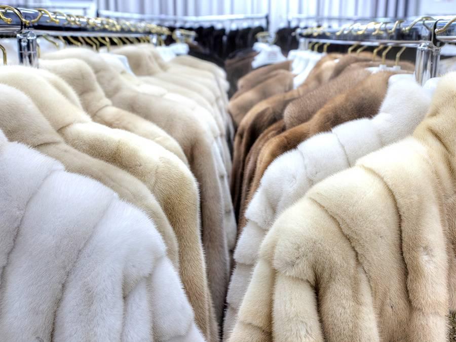 Результаты проверки требований по маркировке меховых изделий
